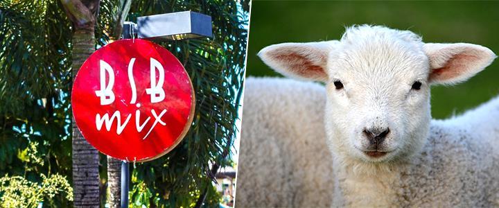 30/04 e 01/05: Famoso evento de Brasília terá stand de ativismo vegano