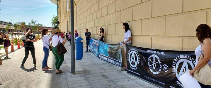 Aquário do Rio de Janeiro é inaugurado em meio a protestos