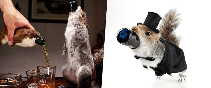 Bizarro: Empresa com selos veganos em 23 produtos cria garrafa envolvida por esquilos empalhados