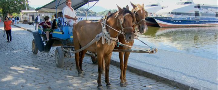 Cavalos serão substituídos por carros elétricos na Ilha de Paquetá (RJ)