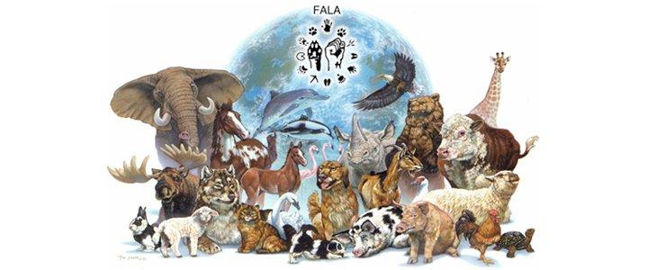 Conheça a Frente que percorre o Brasil fortalecendo a voz dos outros animais