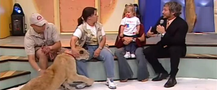Leão ataca criança em programa de TV ao vivo no México