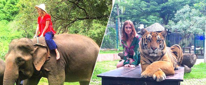 Marina Ruy Barbosa posa em fotos com animais explorados durante férias na Tailândia