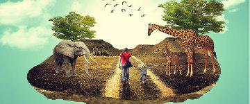 8 anos de Veganismo: um relato pessoal