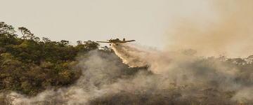 Campanha de arrecadação para combate ao fogo na Chapada dos Veadeiros ultrapassa meta em 24 horas