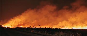 Incêndio na Chapada dos Veadeiros já consumiu área maior que a de Fortaleza e Belo Horizonte juntas