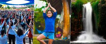 Mega Festival reúne música, práticas de bem-estar e alimentação vegana em meio à natureza