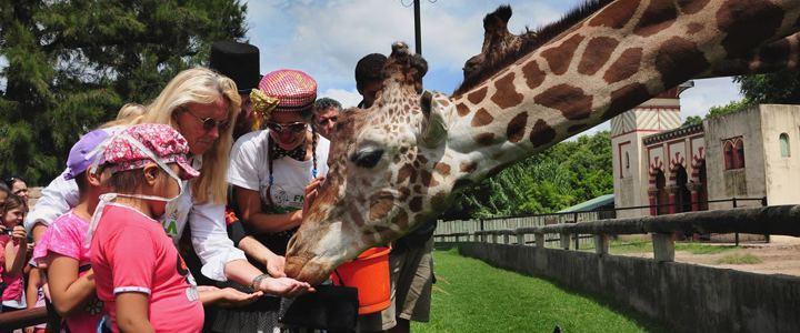 Zoológico de Buenos Aires fecha as portas e vai dar lugar a um eco parque